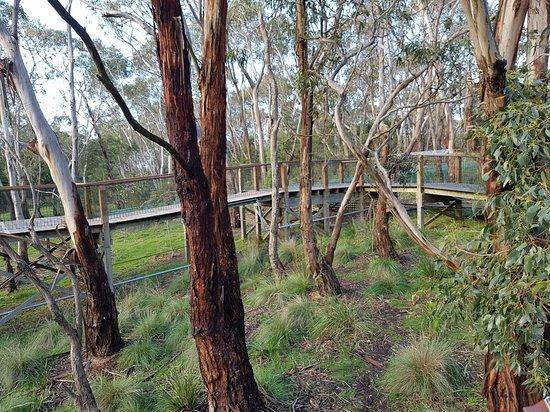 Cowes, Australia: 20160714_102117_large.jpg