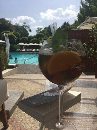 Hotel InterContinental Geneve: Pool
