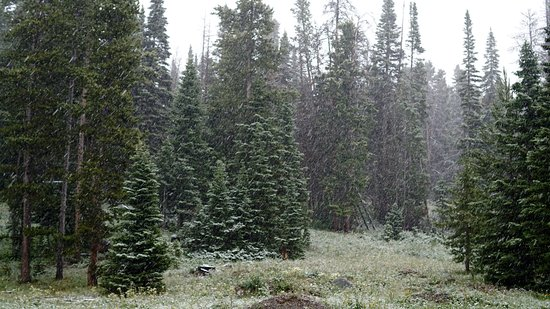 Crevice Mountain Lodge: Snow in July