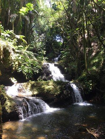 Papaikou, Χαβάη: waterfall