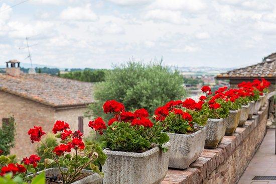 Monteroni d'Arbia, Ιταλία: Terrazzao