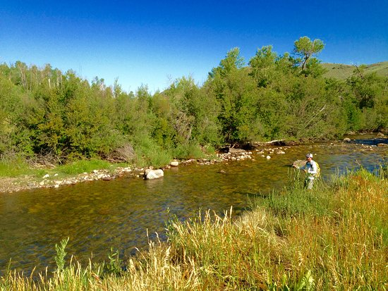 Edwards, Колорадо: Fly fishing with Vail Valley Anglers