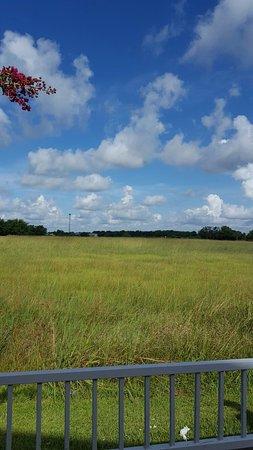 Angleton, Teksas: 20160725_095645_large.jpg