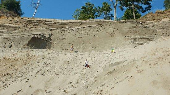 Sand Hill Park: 2016-07-24_08-22-40_large.jpg