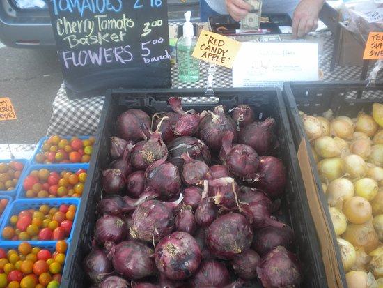 Oxford, MS: Onion varieties