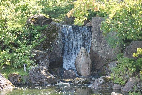 Lethbridge, Canadá: Waterfall