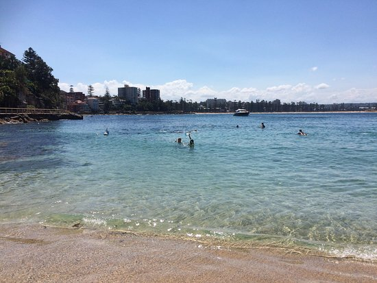 Shelly Beach: Picture of bay