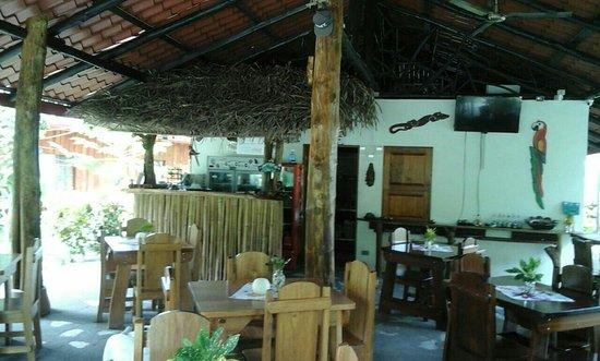 Playa Matapalo, كوستاريكا: Guava Lodge Playa Matapalo