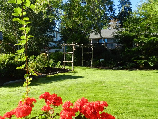 Above The Sound Bed and Breakfast: Backyard