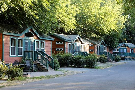 Yogi Bear's Jellystone Park™ Camp-Resort: Tower Park