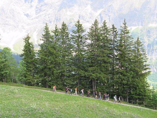Grindelwald, Ελβετία: FIRST