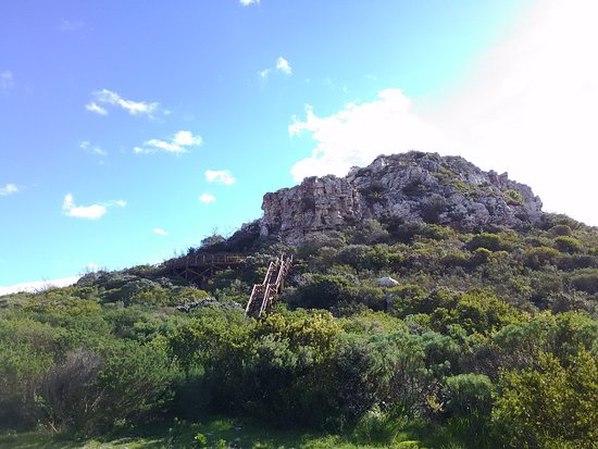 Hermanus, Sør-Afrika: The South-eastern side of Hoy's Koppie has wooden stairs till halfway up.