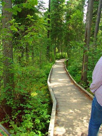 Radium Hot Springs, Kanada: groomed path at Olive Lake