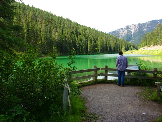 Radium Hot Springs, Kanada: Olive Look viewpoint (2 minutes from car)