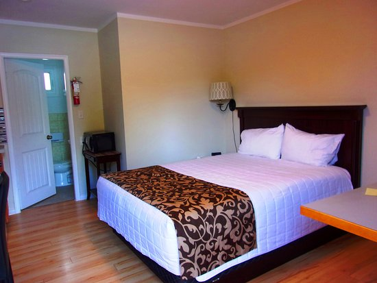 Cranbrook, Canada: Supportive but not hard queen size bed