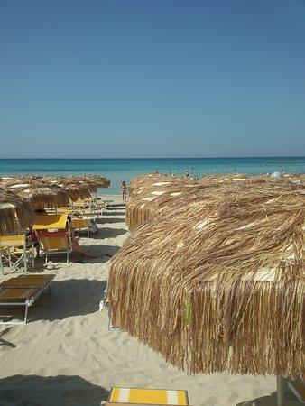 Presicce, Italy: Mare caraibico.. sabbia bianca e fine..........