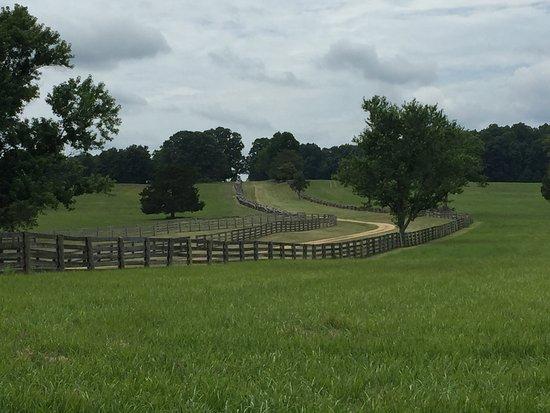 Appomattox, VA: photo5.jpg