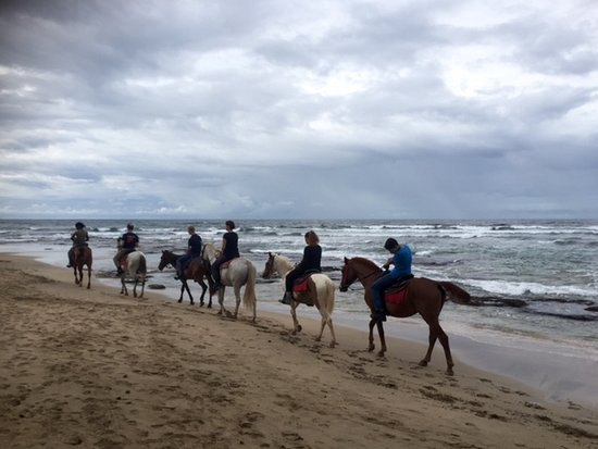 Cocles, Costa Rica: Horse back riding with the kids
