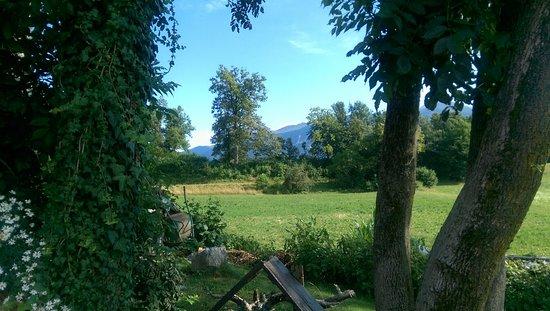 Alp Penzion: IMAG0450_large.jpg