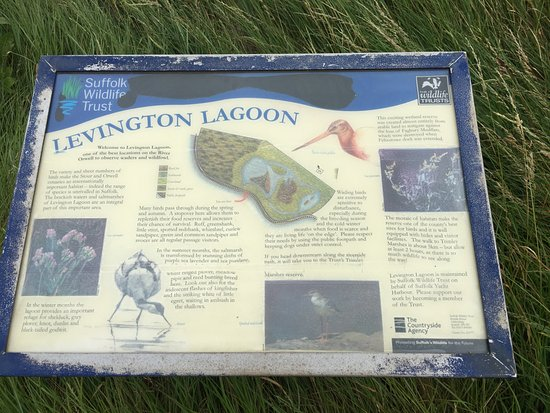 Графство Саффолк, UK: Lagoon information board