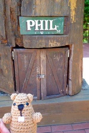 Punxsutawney, PA: Phil's Famous Burrow