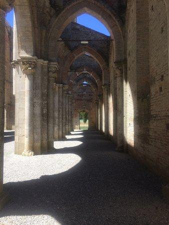 Chiusdino, Italia: Luce e ombra