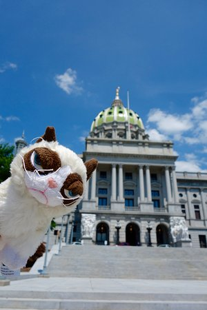 Pennsylvania State Capitol 사진