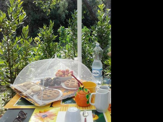 Monteprandone, Italia: great breakfast!