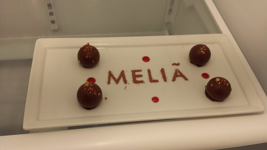 Melia Orlando Suite Hotel at Celebration: our welcome