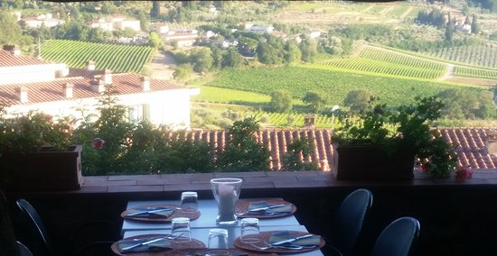 Panzano in Chianti, Italia: The view over the vineyards and olive trees