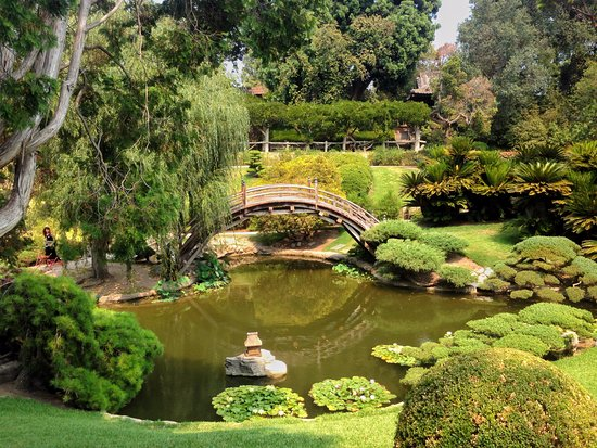 Japanese Garden at Huntington - Picture of The Huntington Library ...