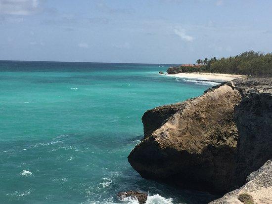 Union Hall, Barbados: photo3.jpg