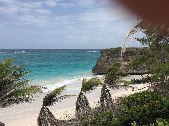 Union Hall, Barbados: photo5.jpg