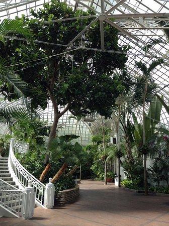 Franklin Park Conservatory And Botanical Gardens: Indoor Greenhouse
