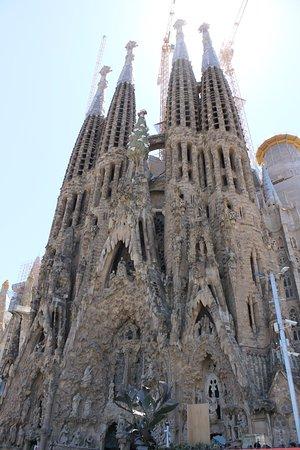 写真Barcelona Day Tours枚