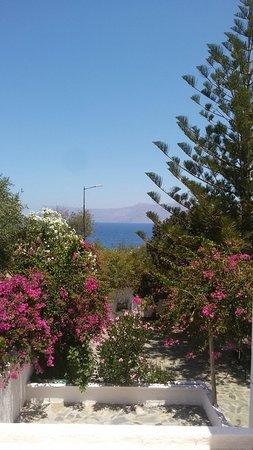 Delfini Hotel Apartments Crete: Come non amare una simile vista ...