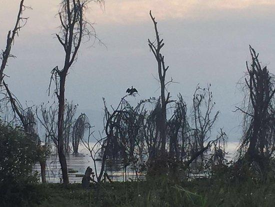 Lake Naivasha Sopa Resort: photo9.jpg