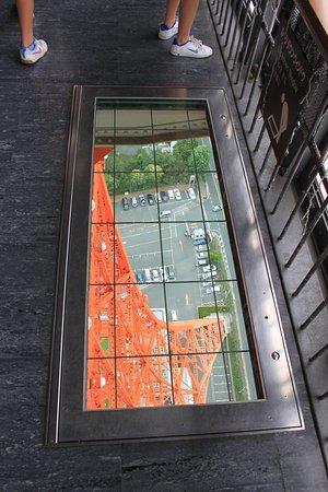 Tokyo Tower: Vertigo?? Atrévete...