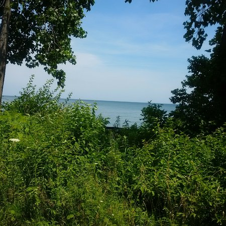 Huron, OH: rough terraine and overgrowth getting to beach-worth the trek