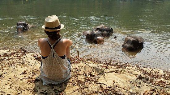 Foto de Provincia de Kanchanaburi