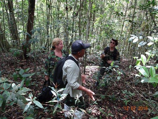 Национальный парк Кхао-Яй, Таиланд: Ballade dans la jungle