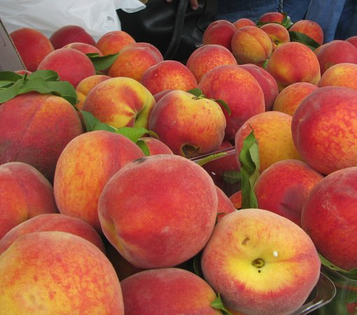 Alto Pass, IL: fresh peaches right off the trees