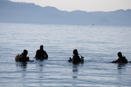 Tahoma, Californie : Early Morning Dive at Meeks Bay