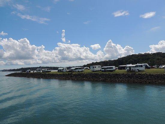 Tiritiri Matangi Island Foto