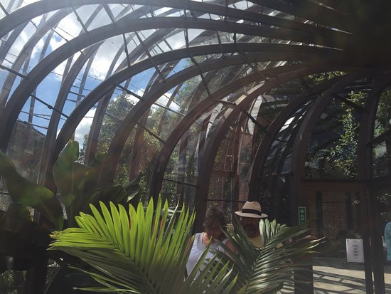 Whitchurch, UK: Loved the Botanical Green house structure, interesting plants all associated with the gin.