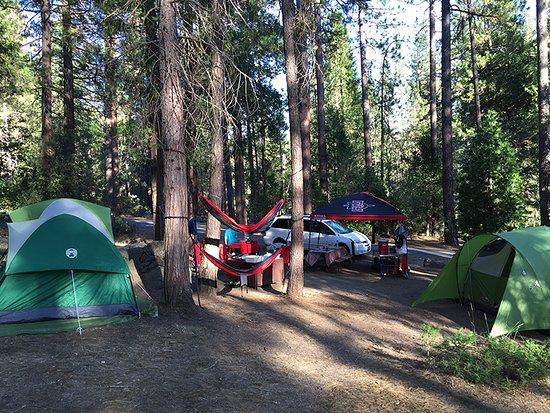 Wawona Campground: Site 48