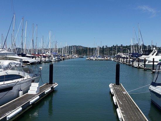 Sausalito, كاليفورنيا: Joli petit port