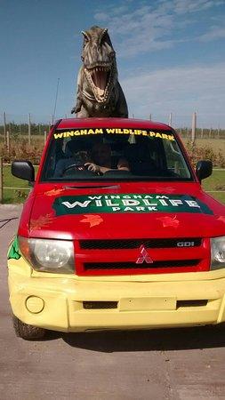 Wingham, UK: IMG_20160722_162405015_large.jpg