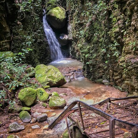 Santa Elena, คอสตาริกา: IMG_20160724_124514_large.jpg