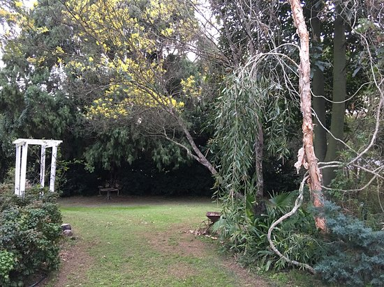 Boonah, Αυστραλία: Lovely lawns with beautiful old trees shading a love seat